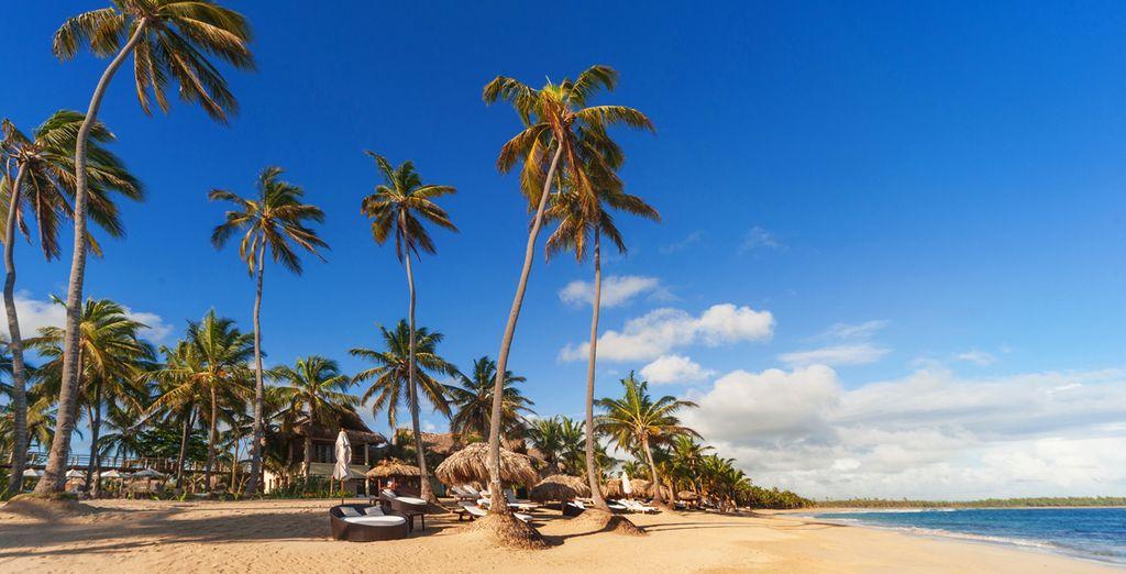Ou flânez sur la plage privée de l'hôtel...