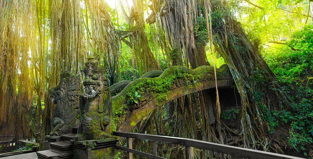 Ensuite, partez à la découverte du centre culturel de l'île
