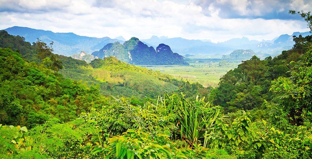 A moins que vous ne préfériez la jungle de Khao Sok !