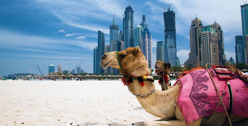 Le rêve se trouve tout près de Dubaï