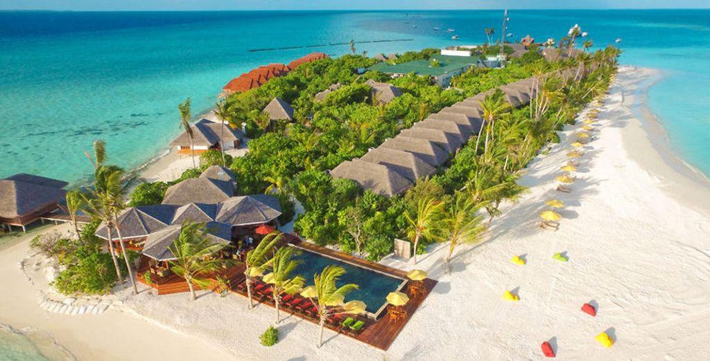 ... Paradies auf den Malediven!