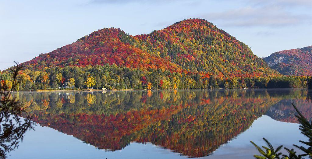 Wälder und Seen