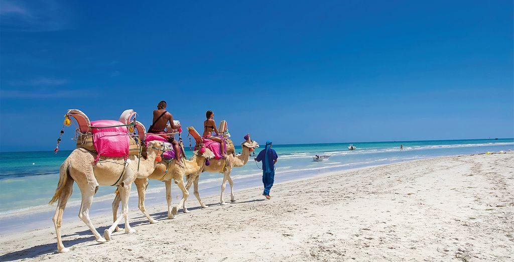 Genießen Sie einen Spaziergang an den tunesischen Stränden während Ihres Urlaubs