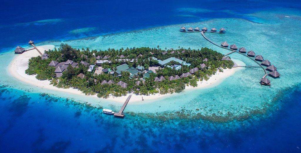 Entdecken Sie die paradiesische Insel der Malediven während Ihres nächsten Urlaubs