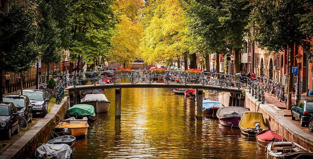 Entdecken Sie Amsterdams Brücken - ein UNESCO Weltkulturerbe