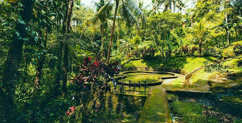 Entdecken Sie die Gärten um den Goa Gajah Tempel herum