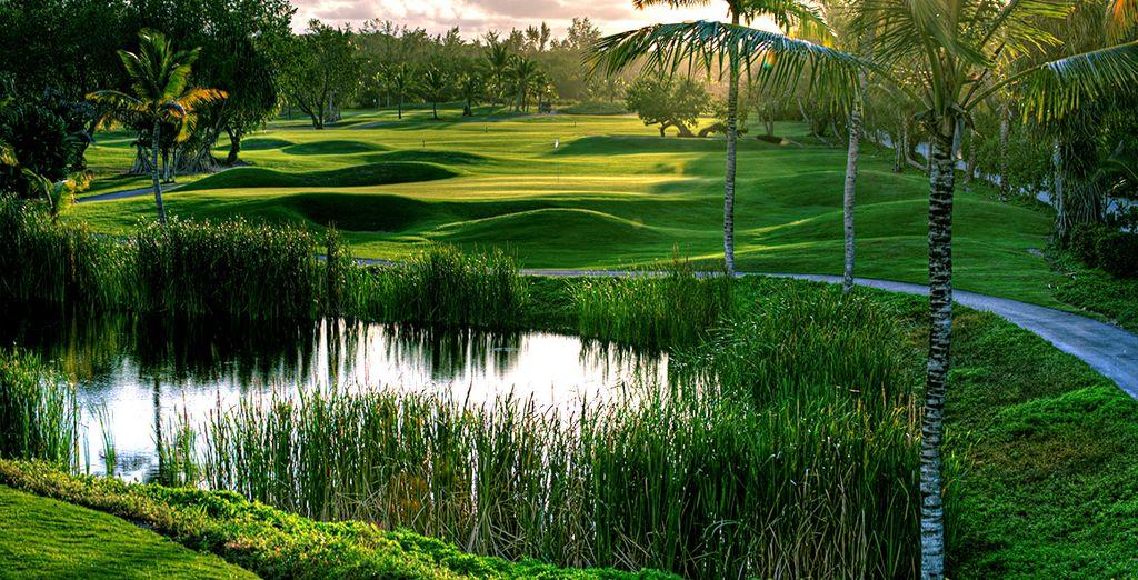 Spielen Sie eine Runde Golf