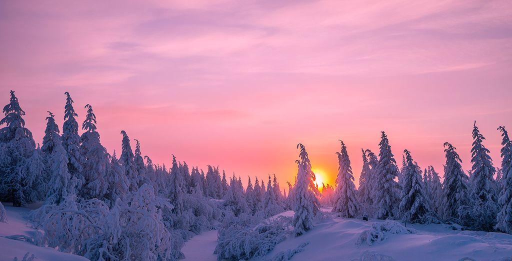 Ihr dritter Tag führt Sie nach Rovaniemi