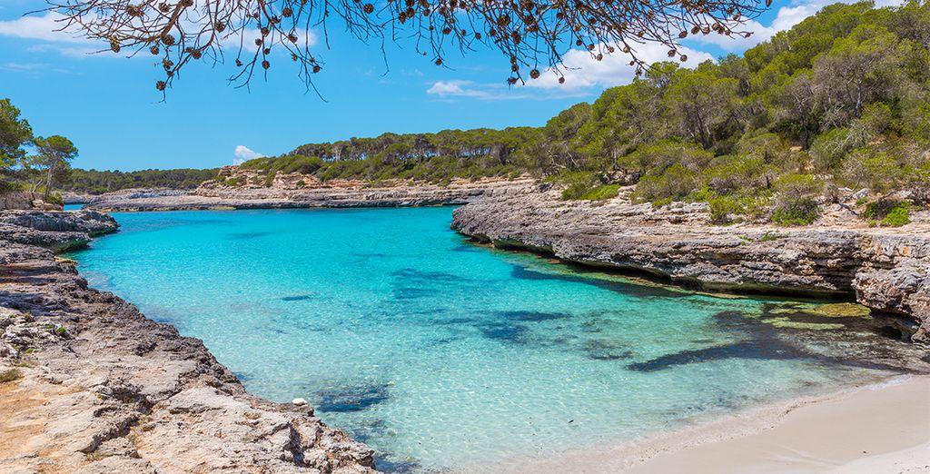 Sie werden Mallorca lieben!