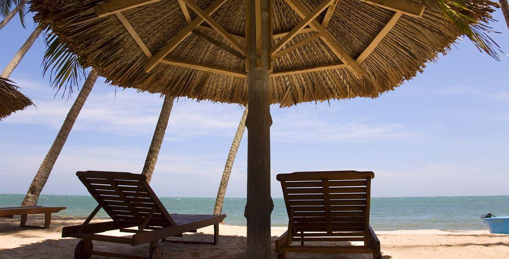 Hier können Sie in der Sonne entspannen und den Alltagsstress hinter sich lassen