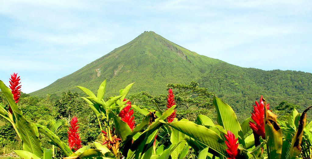 Die Natur Costa Ricas ist atemberaubend