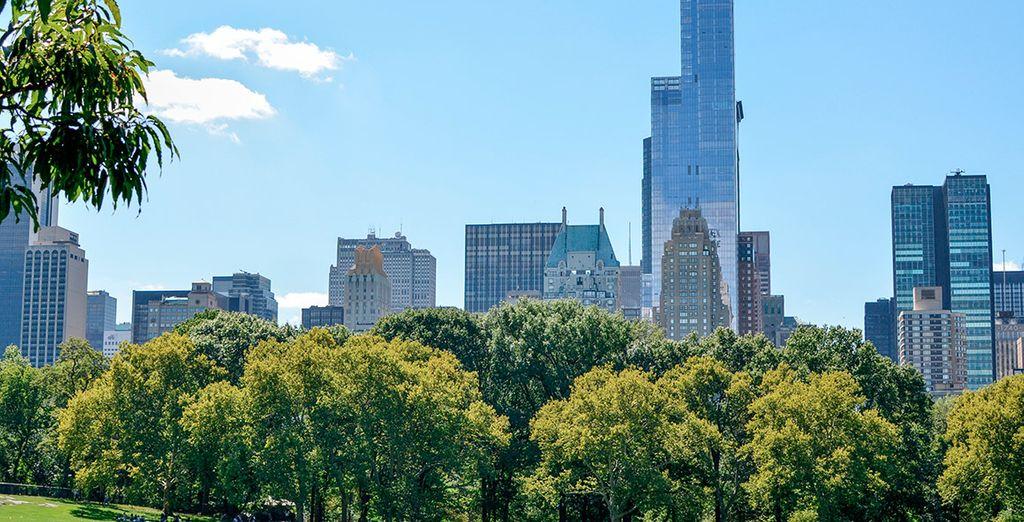 Und bräunen Sie sich während eines Picknicks im Central Park
