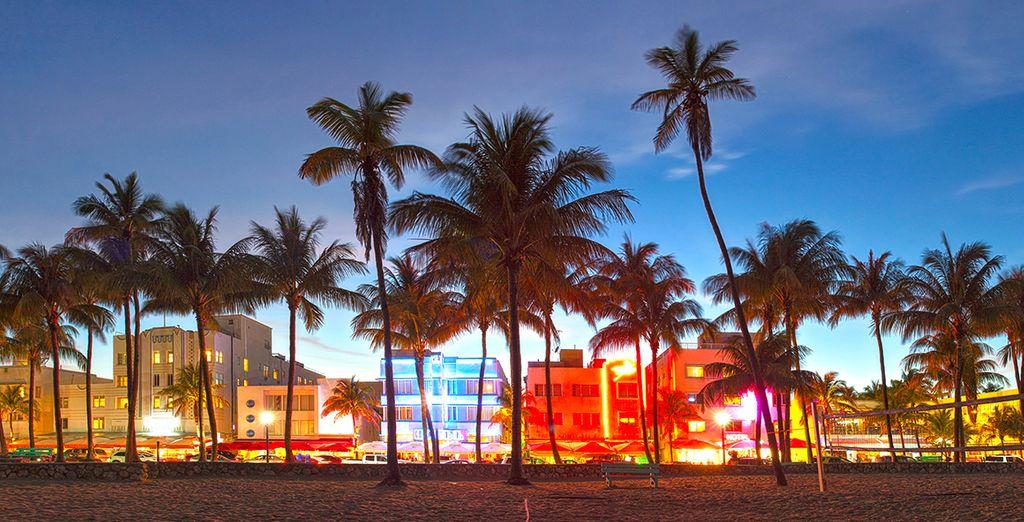 Erkunden Sie das Nachtleben von Miami!