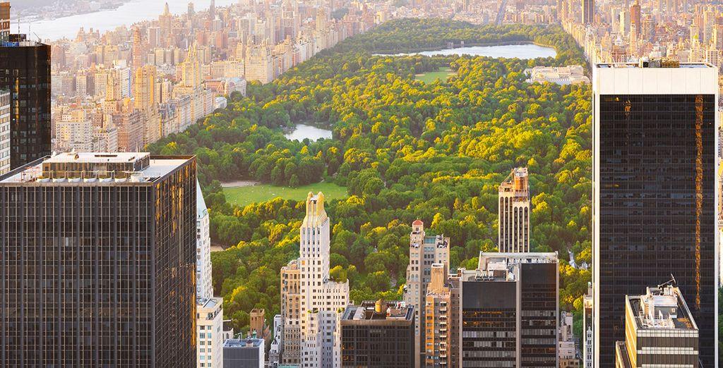 Spazieren Sie durch den Central Park