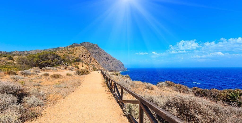 Buchen Sie Ihren Urlaub auf Fuerteventura