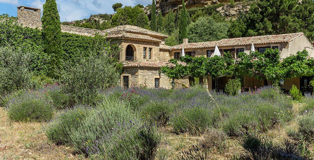 Im Herzen der Provence
