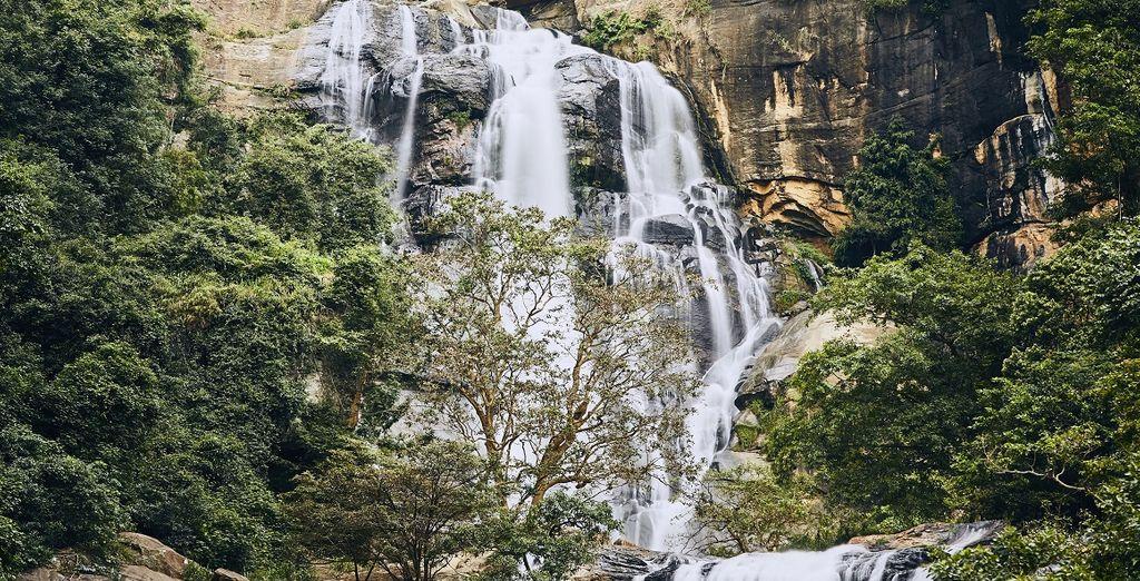 Die atemberaubende Natur Sri Lankas