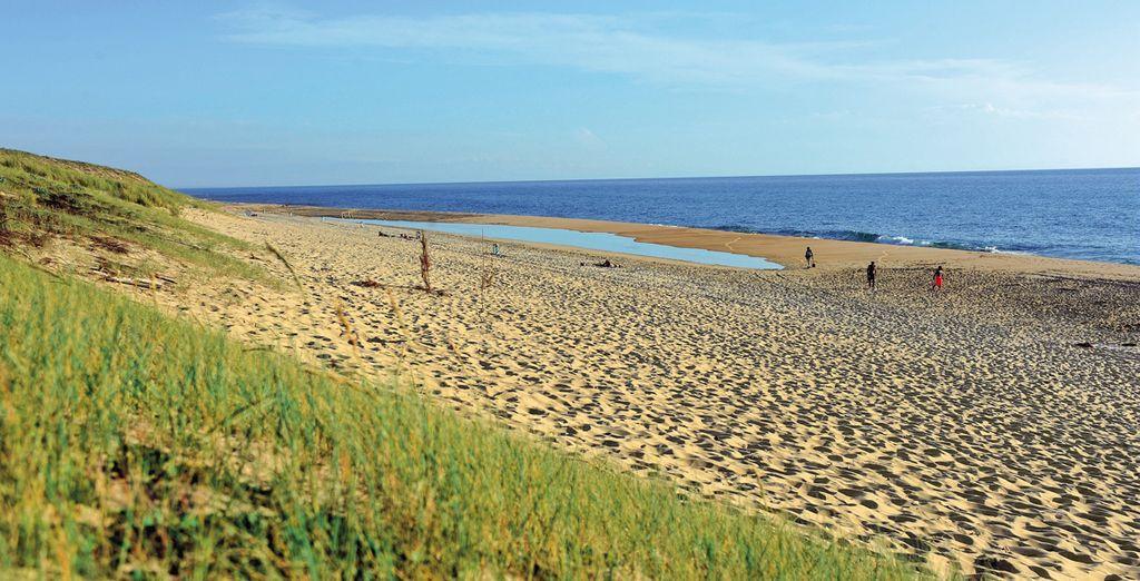 Largos paseos por la playa ...
