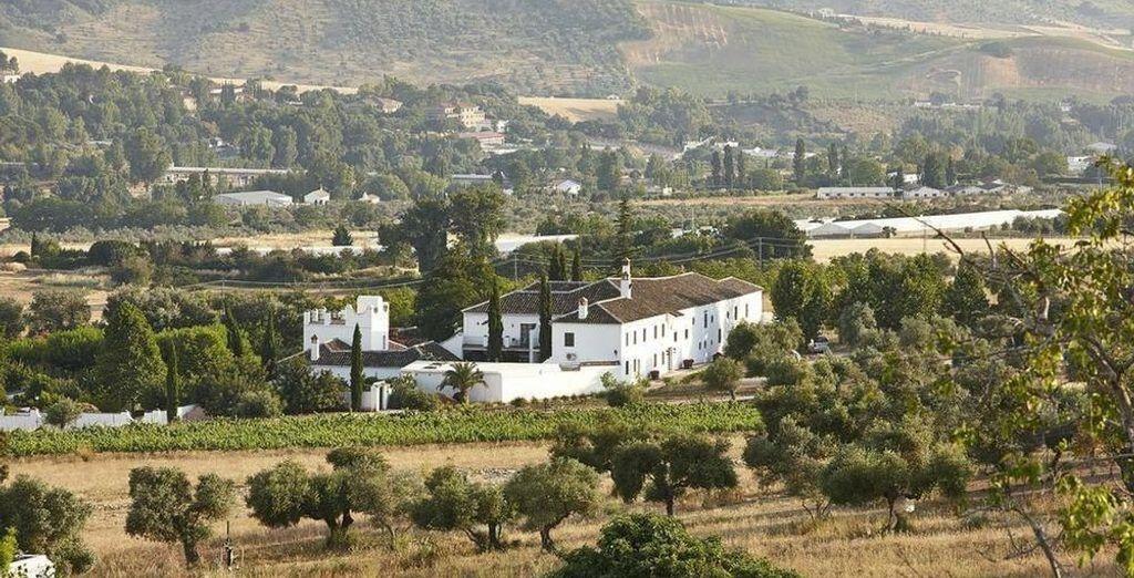 Situado en una zona de viñedos y olivares