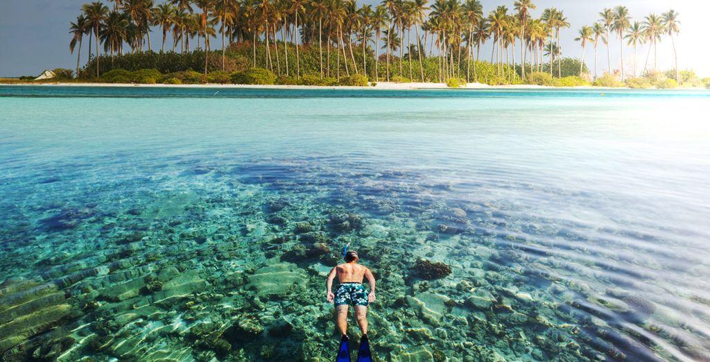 Practique deportes acuáticos en la naturaleza salvaje