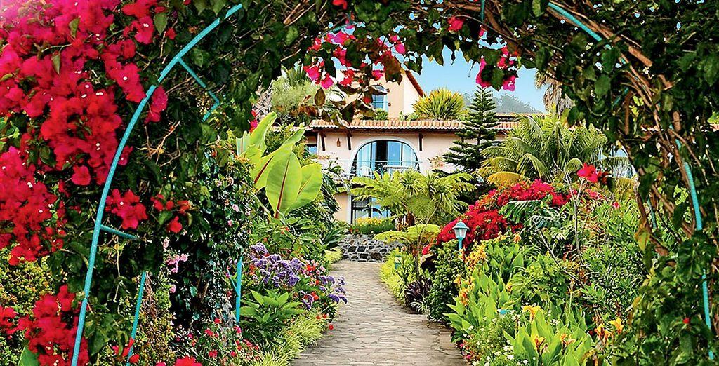 Un oasis de calma y bienestar
