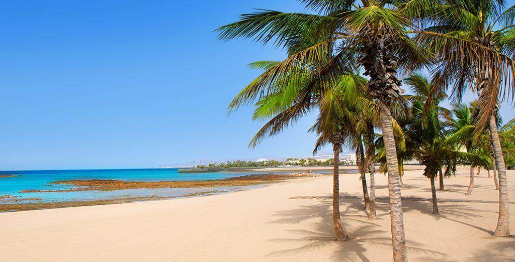 ¡Te damos la bienvenida a las Canarias!