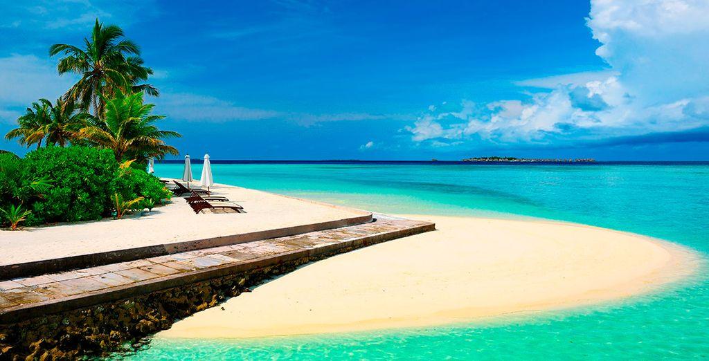 Prepara tus maletas y descubre el paraíso