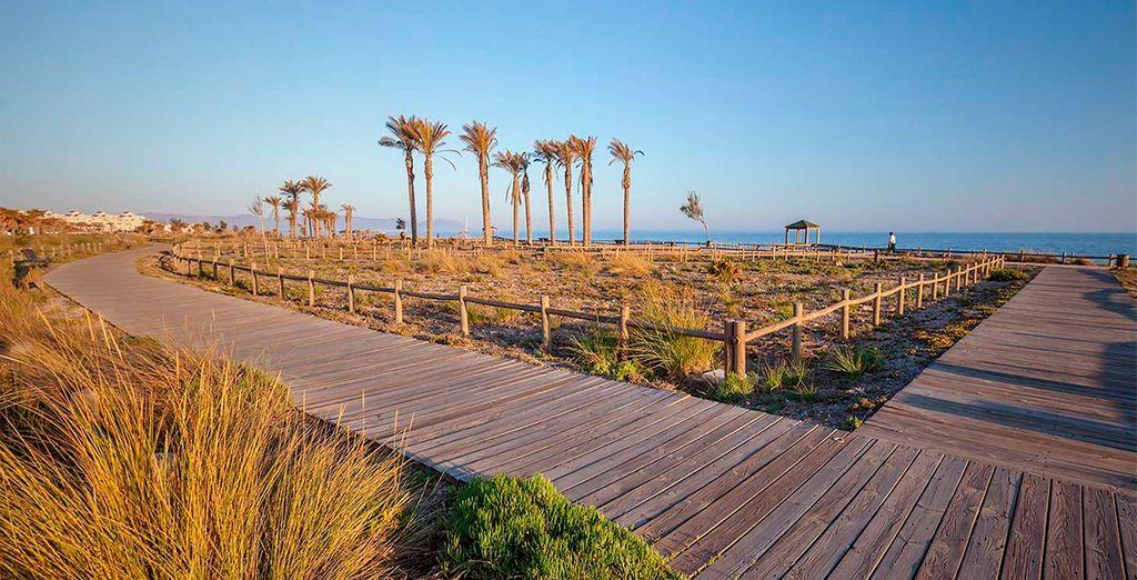 Playas - última hora en Andalucía