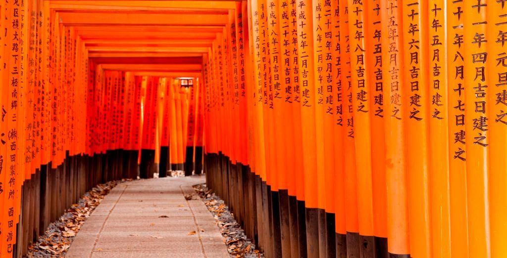 Camino al santuario Inari, en Kyoto