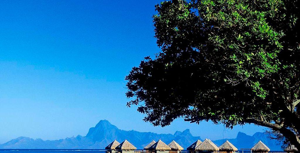 Vistas de las Villas del Meridien Tahití