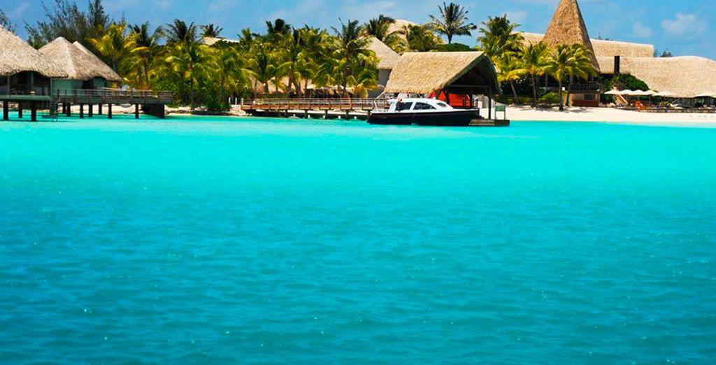 Disfrute de Meridien Bora Bora