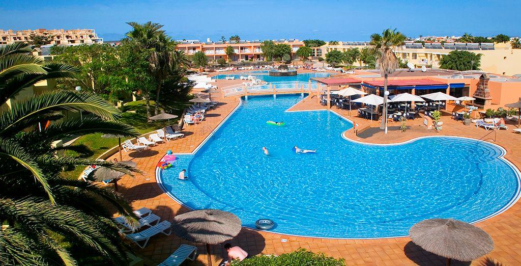 Bienvenido al Hotel Lobos Bahía Club...