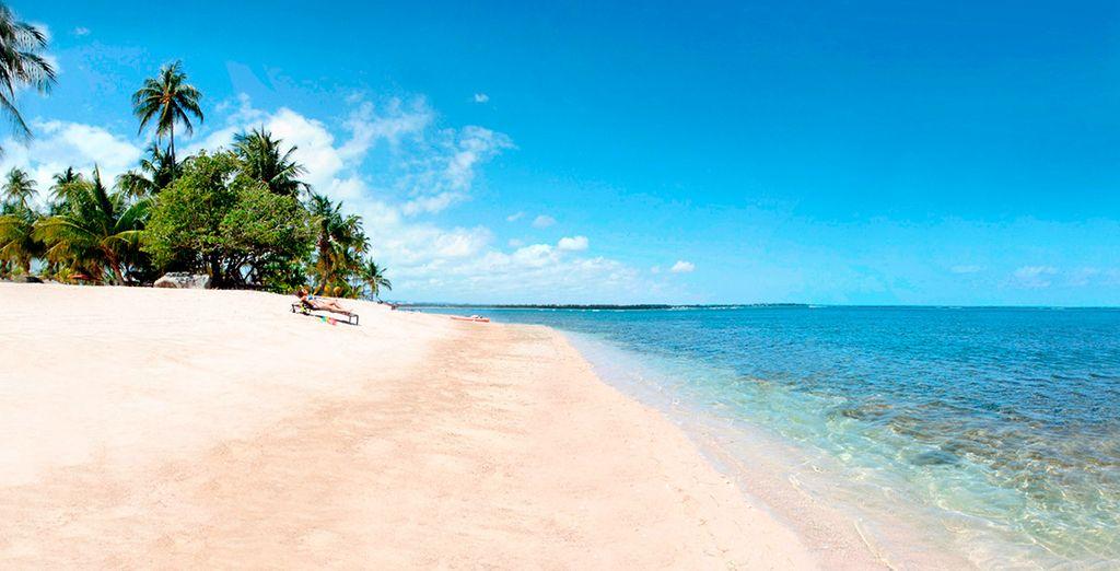 Playas paradisiacas para sus vacaciones