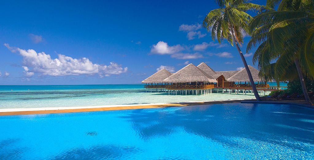 Vistas idílicas desde la piscina