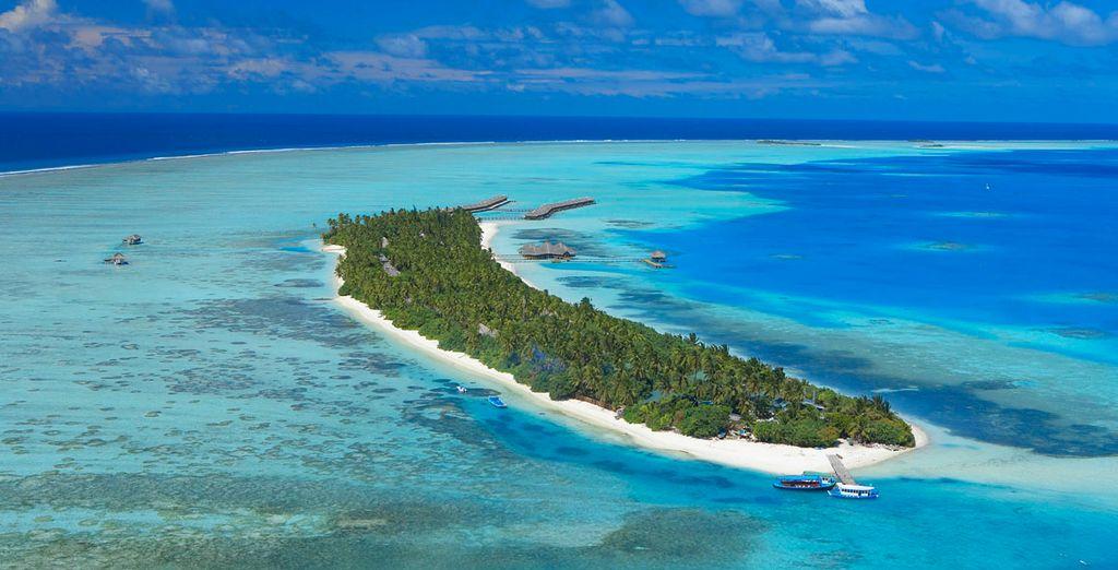 Una isla para un hotel