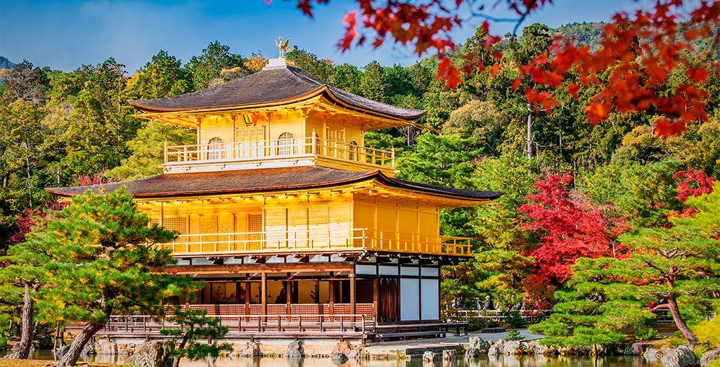 Además, también podrá admirar el templo Kiyomizu