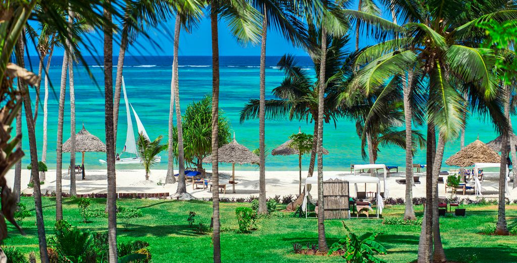 Deléitese con sus playas paradisíacas
