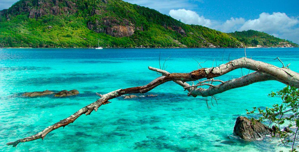 El Edén en medio del Océano Índico