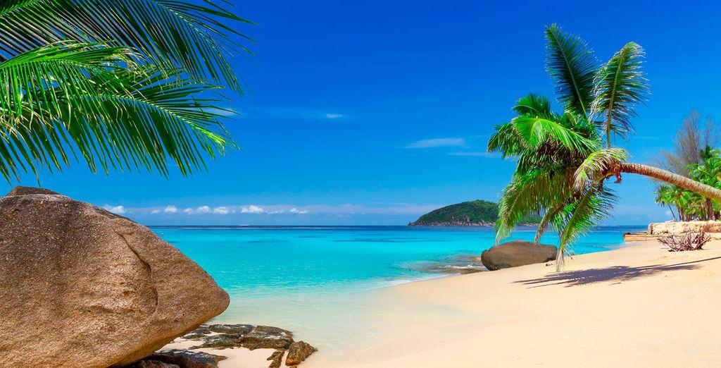 Pasee por las extensas playas de arena blanca