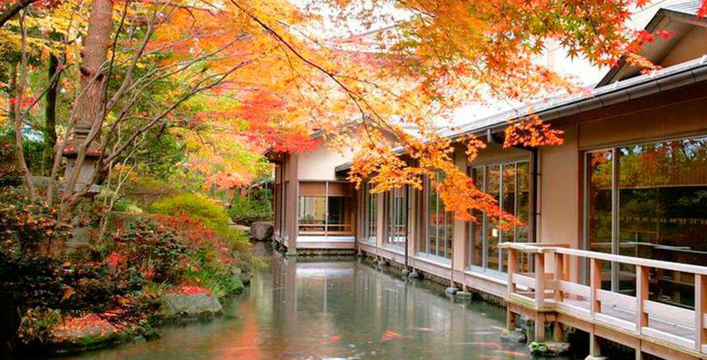 El Hotel Suimeikan 5* en Gero será su hotel en Gero para las salidas de 13 de julio y el 20 de agosto