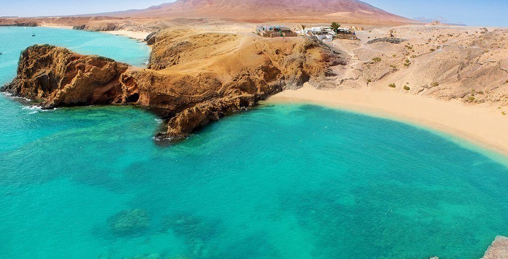Aproveche para visitar la playa de Papagayo