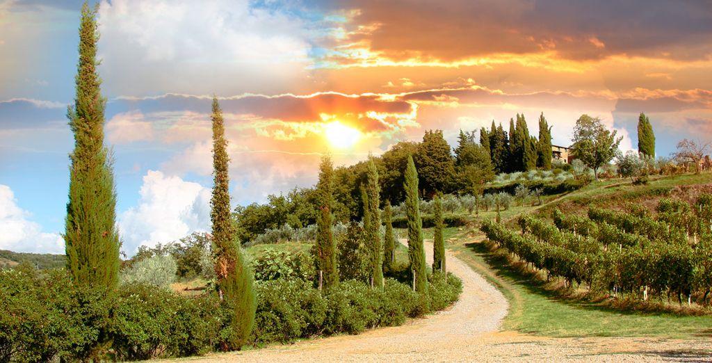 La Toscana es una región situada hacia el noroeste centro de Italia
