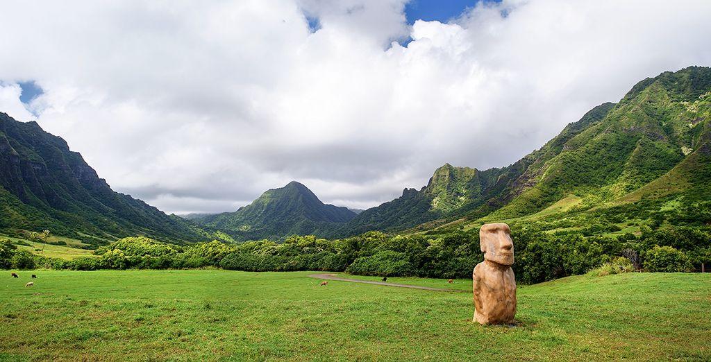 Hawaii paradisiaco, playas únicas y vegetación exuberante