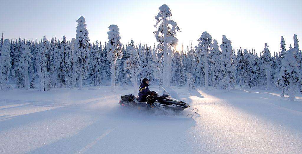 Conduce una moto de nieve recorriendo la magnífica naturaleza lapona a lo largo del límite con Rusia