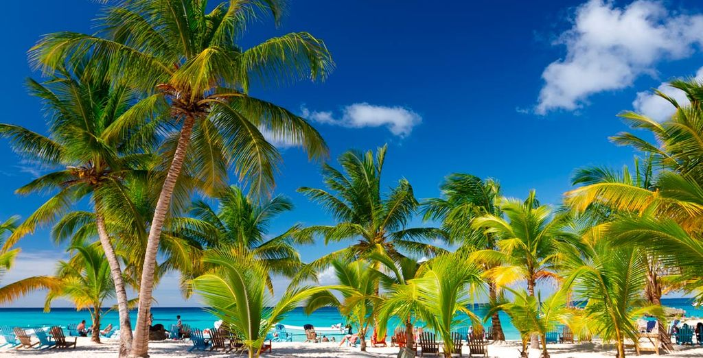 Playas paradisíacas en Punta Cana, un lugar de ensueño