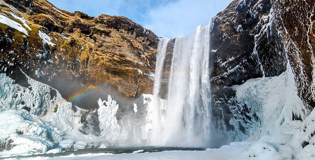 Vivirás una experiencia única en la hermosa Islandia
