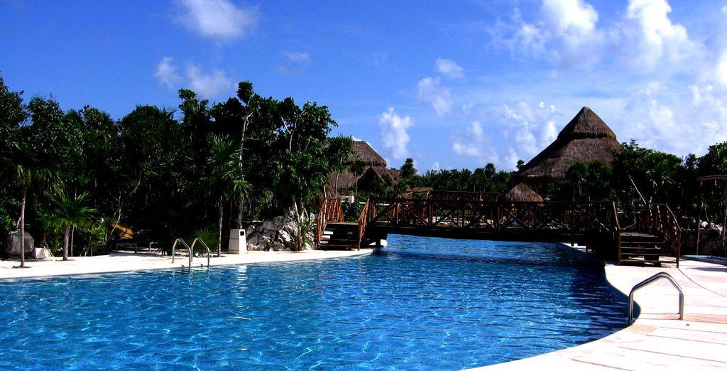 Jardines y piscinas rodean el hotel