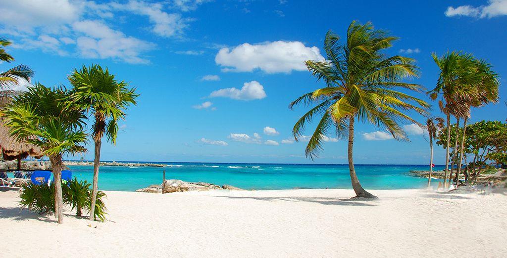 Tu hotel frente a la playa