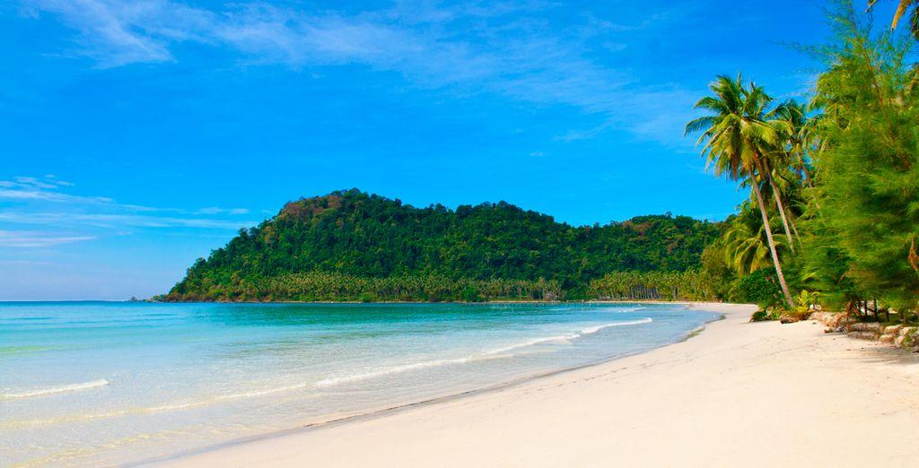 Playas paradisíacas para tus merecidas vacaciones