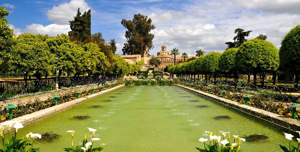 La Sinagoga y el Alcázar, los Baños Árabes, el jardín botánico...